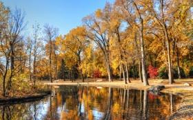 Картинка пруд, скамья, камень, деревья, небо, парк, осень