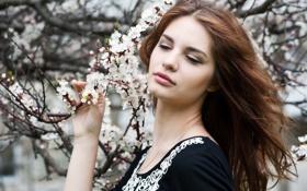 Картинка цветы, лицо, улыбка, дерево, Девушки, весна
