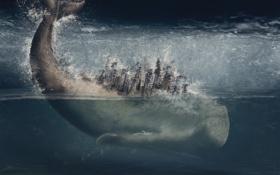 Картинка море, брызги, дома, кит