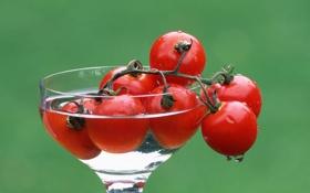 Обои вода, бокал, помидоры, зеленый фон, черри
