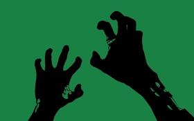 Обои зелёный, картинка, фон, обои, руки, минимализм