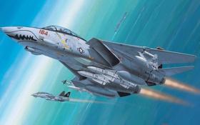 Обои ракеты, подъём, Grumman, истребитель-перехватчик, Tomcat, F-14, ВМС США