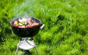 Обои мангал, шашлык, мясо, трава, овощи, дымок, кукуруза