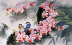 Картинка цветы, стиль, красота, Птицы, арт, орхидеи, китайский