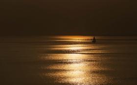 Картинка море, ночь, лодка, парус