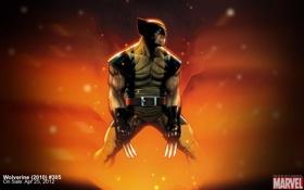 Картинка Wolverine, marvel, комикс, Росомаха