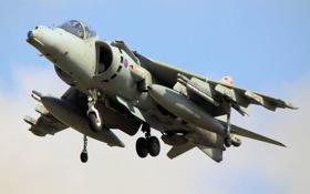 Обои небо, штурмовик, взлет, McDonnell Douglas, Harrier II, AV-8B, «Харриер» II