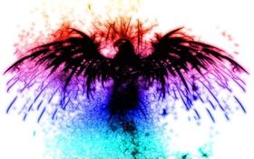 Обои орел, необычно, радуга