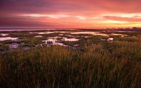 Картинка landscape, пейзаж, nature, трава, небо, water, light