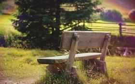 Обои поле, трава, деревья, скамейка, природа, радуга, лавочка