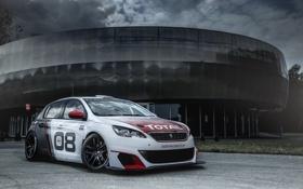 Обои гонки, Peugeot, пежо, 308, 2016, Racing Cup
