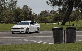 Обои белый, бмв, BMW, парковка, white, f10, мусорные баки