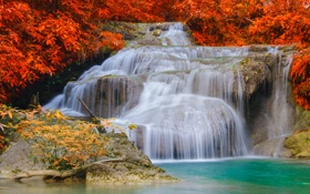 Обои осень, ручей, камни, пороги, водопад.кусты