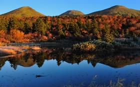 Обои осень, вода, деревья, пейзаж, природа, озеро, холмы