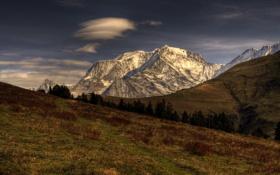 Обои трава, деревья, горы, снег, вершины, облако
