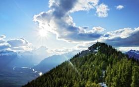 Обои Sulphur Mountain, небо, природа, лес, высота, гора