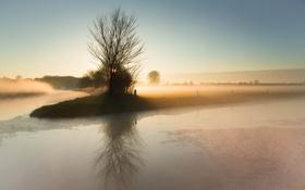 Картинка поле, пейзаж, туман, утро, канал