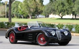 Обои машина, ретро, Jaguar, ягуар, кабриолет, 1951, M Roadster