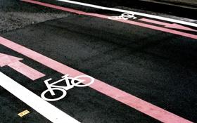 Обои разметка, полоса для велосипеда, дорога, асфальт