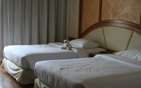 Обои отель, мишка, обои, кровати, интерьер