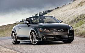 Обои Audi, ауди, Roadster, родстер, автомобиль, TTS