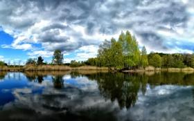 Обои вода, природа, пейзажи, красота, растения, красивые обои, дервья