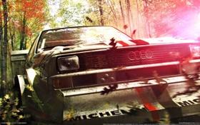 Картинка машина, листья, игра, Dirt 3