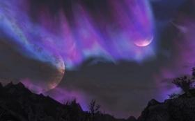 Обои небо, деревья, пейзаж, Skyrim, The Elder Scrolls V, Скайрим