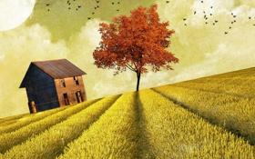 Обои поле, дом, стиль