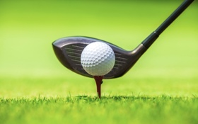 Обои green, Golf, ball