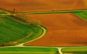 Обои дорога, поле, деревья, поля, дороги, трактор