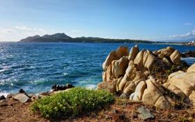 Обои волны, трава, скалы, берег, Италия, Средиземное море, Сардиния