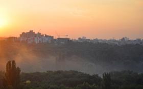 Обои небо, лучи, деревья, оранжевый, город, туман, парк