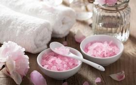 Обои цветы, лепестки, розовые лепестки, spa