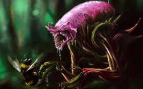 Обои капли, Alien, монстр, пчела, растение, чужой, еда
