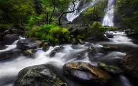 Картинка лес, деревья, скала, река, камни, водопад, поток