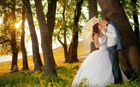 Картинка зелень, трава, девушка, деревья, любовь, счастье, зонтик