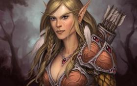 Обои лес, ожерелье, эльфийка, стрелы, elf