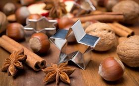 Картинка Рождество, бадьян, формочки, орехи, праздники, звезды, лесные