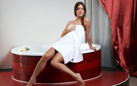 Картинка занавески, ванная, полотенце, плитка