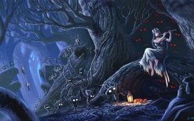 Обои лес, глаза, девушка, Ночь, духи, флейта
