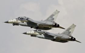 Обои истребитель, пара, полёт, многоцелевой, сверхзвуковой, «Цзинго», AIDC F-CK-1