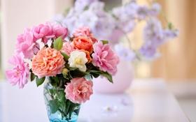 Картинка вода, цветы, оранжевый, розовый, букет, вазочка