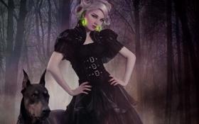 Обои лес, девушка, собака, серьги, кристаллы