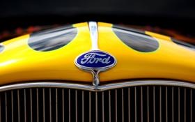 Обои Ford, капот, эмблема, решётка, чётно- желтый