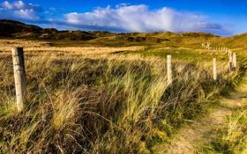 Обои пейзаж, поле, забор, дорога