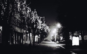 Картинка зима, дорога, деревья, город, огни, улица, черно-белое