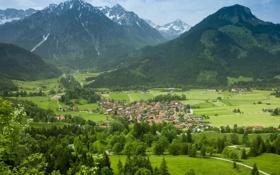 Обои зелень, горы, деревня