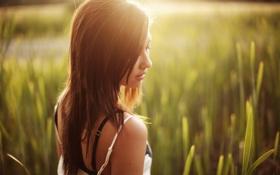 Картинка зелень, трава, девушка, солнце, природа, брюнетка