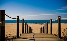 Обои море, пляж, дорожка